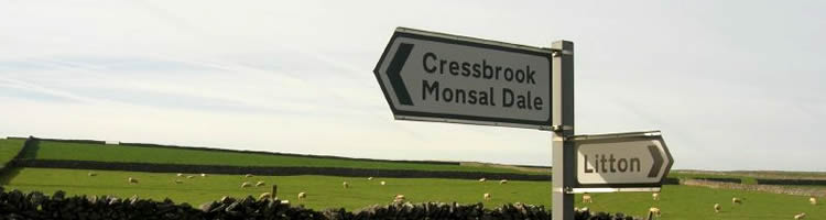 Road signs against a backdrop of grazing sheep